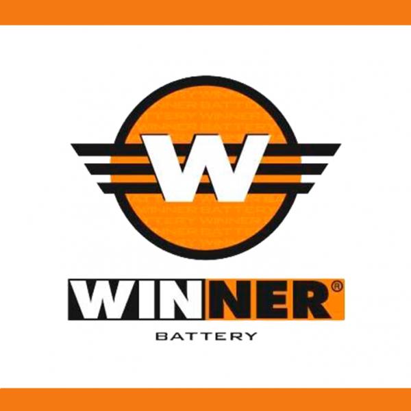 winner-600x600
